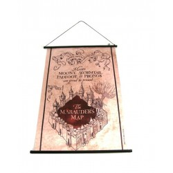 Harry Potter Quadro...